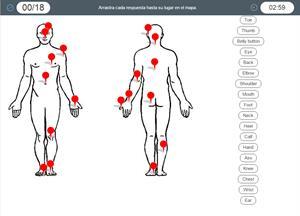 Human Body parts. Partes del cuerpo humano en inglés (Cerebriti)