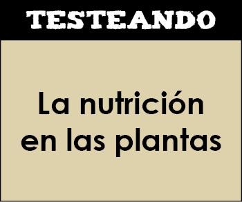La nutrición en las plantas. 1º Bachillerato - Biología (Testeando)