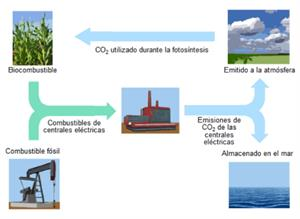 Combustibles fósiles. Pruebas liberadas PISA. Física (2015)
