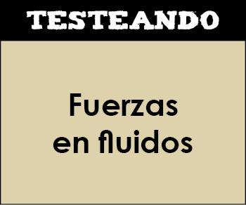 Fuerzas en fluidos. 4º ESO - Física y química (Testeando)
