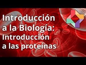 Introducción a las proteínas