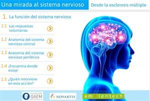 Una mirada al sistema nervioso