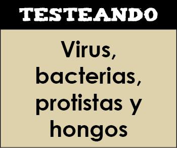 Virus, bacterias, protistas y hongos. 1º ESO - Ciencias de la Naturaleza (Testeando)