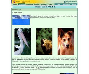 El Reino Animal (Proyecto Biosfera)