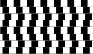 ¿Recto o inclinado? una ilusión óptica de Pilosos.com