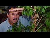 Els viatgers de la gran anaconda. Jordi Torres