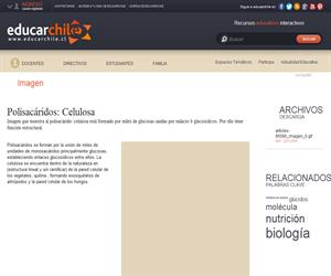 Polisacáridos: Celulosa (Educarchile)