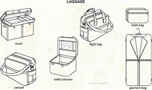Luggage  (Visual Dictionary)