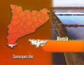 Comarques.doc. El Montsià