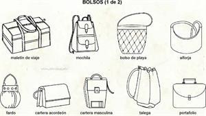 Bolso (Diccionario visual)