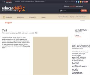 Caití (Educarchile)
