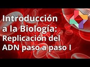 Replicación del ADN avanzada I
