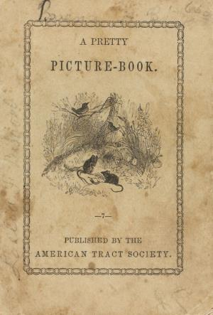 A pretty picture book (International Children's Digital Library)