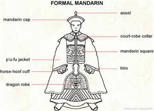Formal mandarin  (Visual Dictionary)