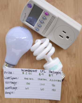 Shedding Light on Energy Efficient Bulbs