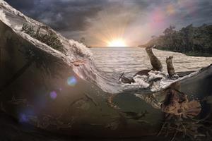 Hallan un cementerio de víctimas del meteorito que terminó con los dinosaurios