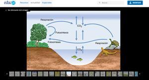 Infografías de biología, química y física