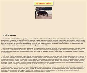 El búfalo cafre, lectura compensiva interactiva