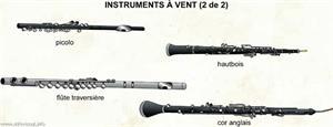 Instruments à vent (2 de 2) (Dictionnaire Visuel)