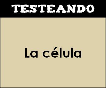 La célula. 2º Bachillerato - Biología (Testeando)