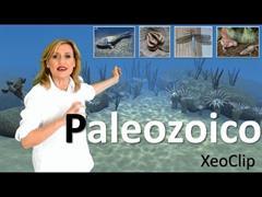 Historia da Terra. Paleozoico