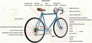 Bicicleta (Diccionario visual)