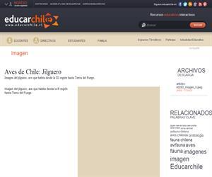Jilguero (Educarchile)
