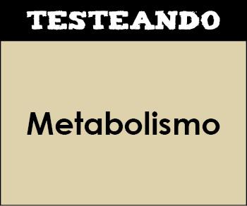 Metabolismo. 2º Bachillerato - Biología (Testeando)
