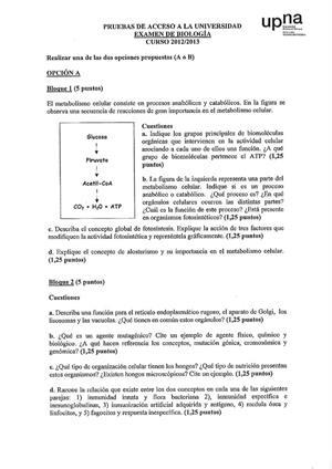 Examen de Selectividad: Biología. Navarra. Convocatoria Junio 2013