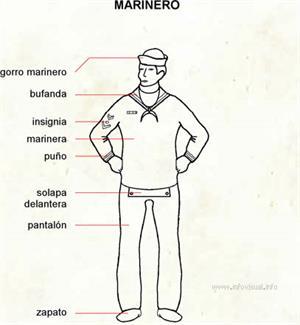 Marinero (Diccionario visual)