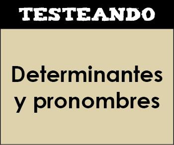 Los determinantes y los pronombres. 5º Primaria - Lengua (Testeando)