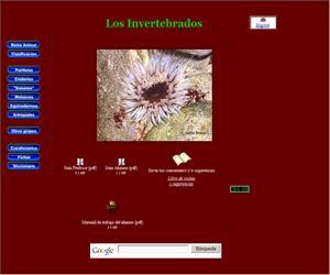 Los Invertebrados (Primaria y ESO)