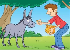 ¡Planta una semilla! Comprensión lectora de ''Platero y yo'' (Editorial Edebé)