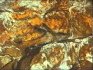La cueva de Altamira Historia de un descubrimiento (Documental TVE)