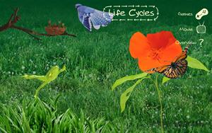 Sheppard Software's Life-Cycles: Learn about different animal life-cycles. Ciclo de la vida en inglés
