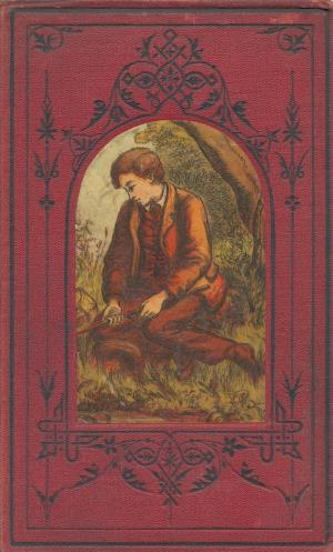 The false heir and other choice stories for the young (International Children's Digital Library)