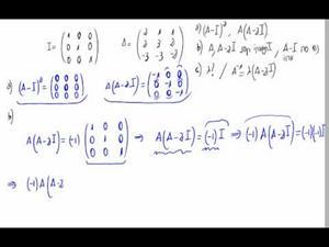 Selectividad C. Valenciana Junio 2010 - Opción A, Problema 1, apartados b) c)