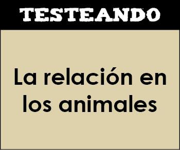 La relación en los animales. 1º Bachillerato - Biología (Testeando)