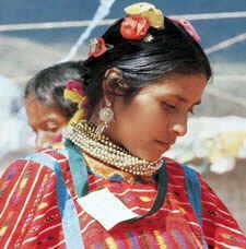Los Pueblos Indígenas de México (cdi.gob.mx)
