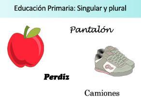 Ficha de actividades. Singular y Plural