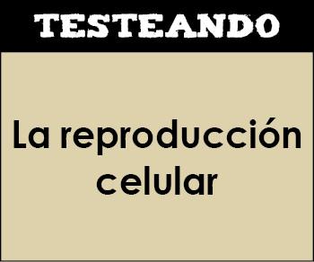 La reproducción celular. 1º Bachillerato - Biología (Testeando)