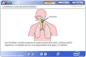 skoool (TM) Lección. La defensa contra las enfermedades