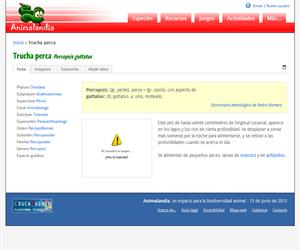 Trucha perca (Percopsis guttatus)