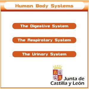 Digestive, respiratory and urinary system. Junta de Castilla y León