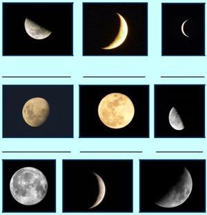 La Tierra y la Luna (adaptación curricular)