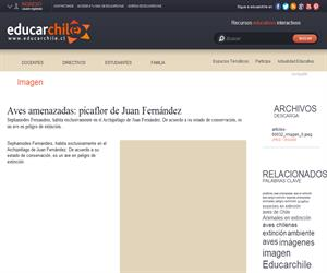 Aves amenazadas: picaflor de Juan Fernández (Educarchile)