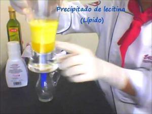Extracción de lecitina de la yema del huevo