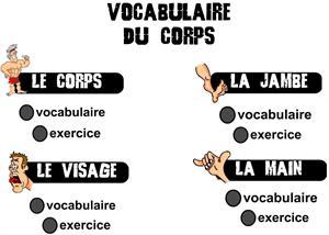 Vocabulaire du corps: aprender las partes del cuerpo en francés
