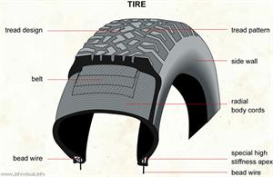 Tire  (Visual Dictionary)