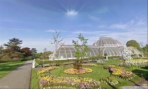Reales Jardines Botánicos de Kew